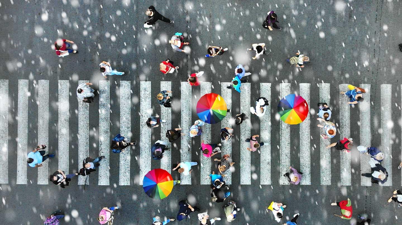 2020-12-08_VP_where-is-umbrella_teaser